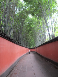 中国らしい風景